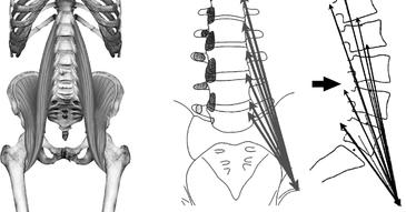 Le « Muscle de l'âme » pourrait être la source de votre anxiété et de votre peur  Xm_xty10