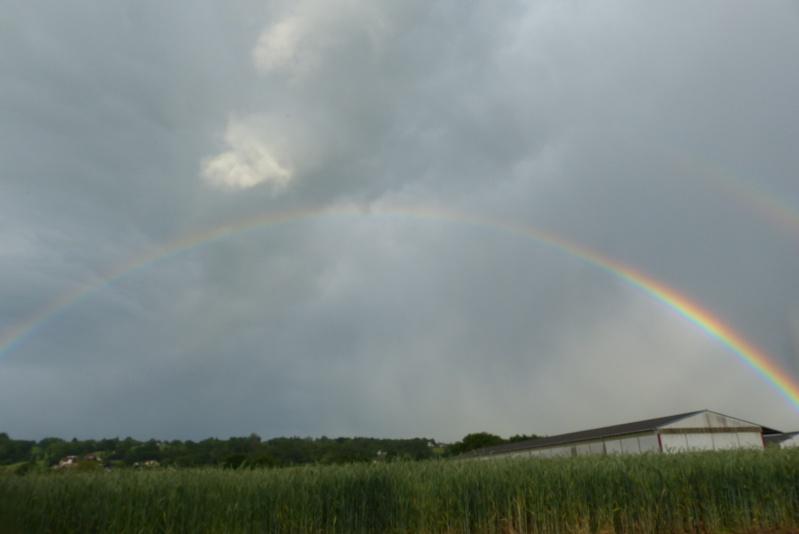 Arc en ciel 05910