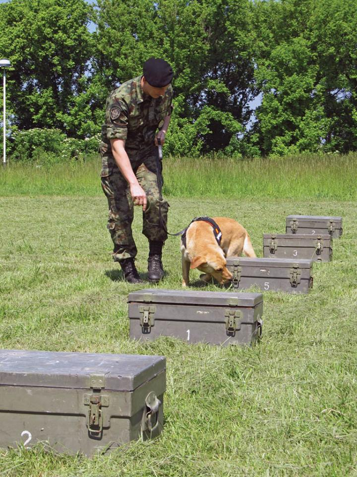 Serbian army multimedia - Page 9 Pas10