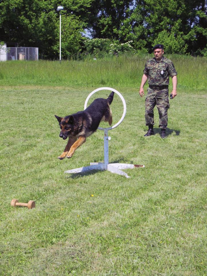 Serbian army multimedia - Page 9 Pas110