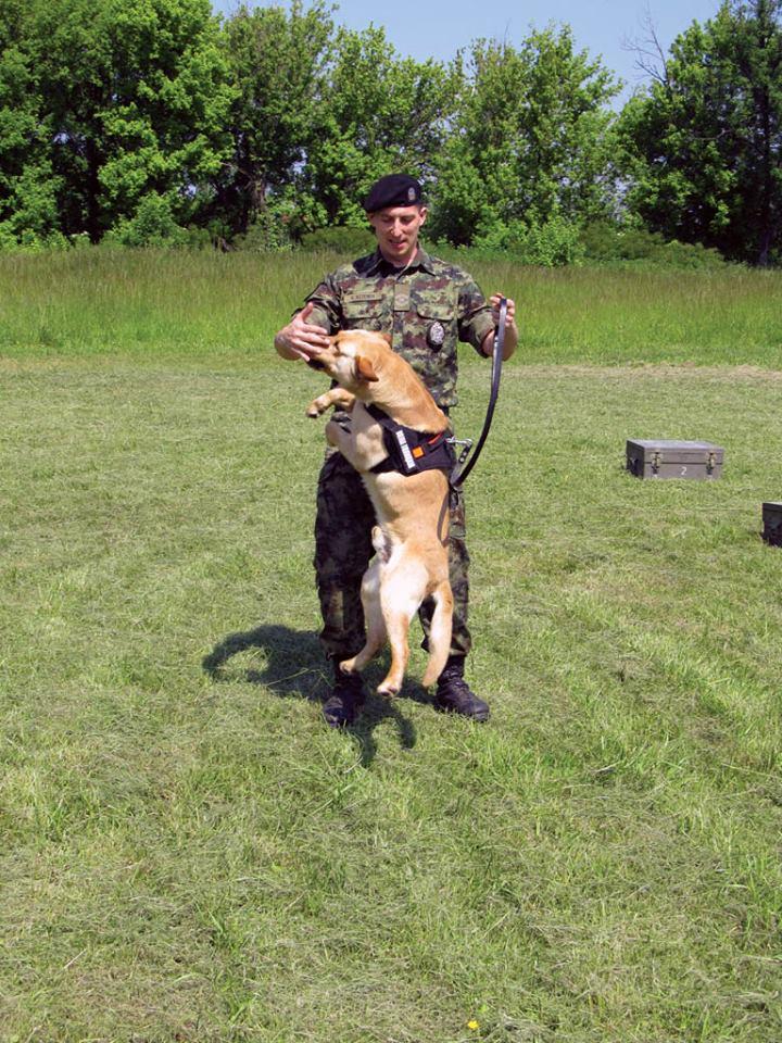 Serbian army multimedia - Page 9 Pas210