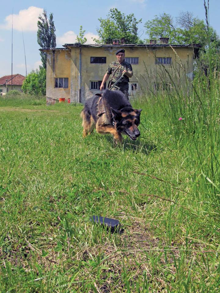 Serbian army multimedia - Page 9 Pas410