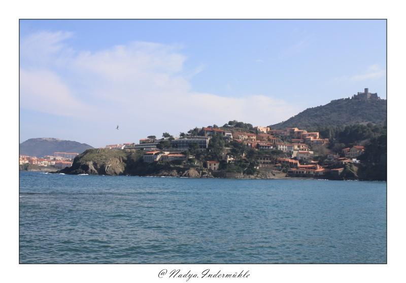 Collioure, petit coin de paradis - Page 2 Cadr2042