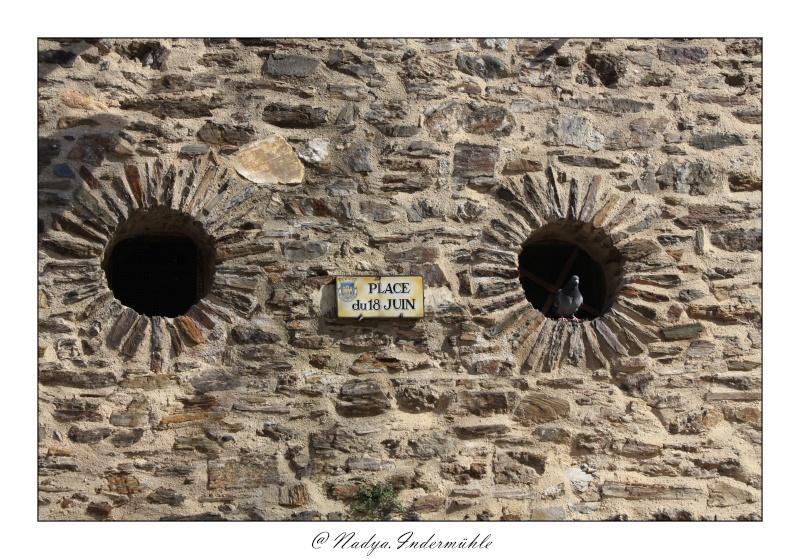 Collioure, petit coin de paradis - Page 2 Cadr2048