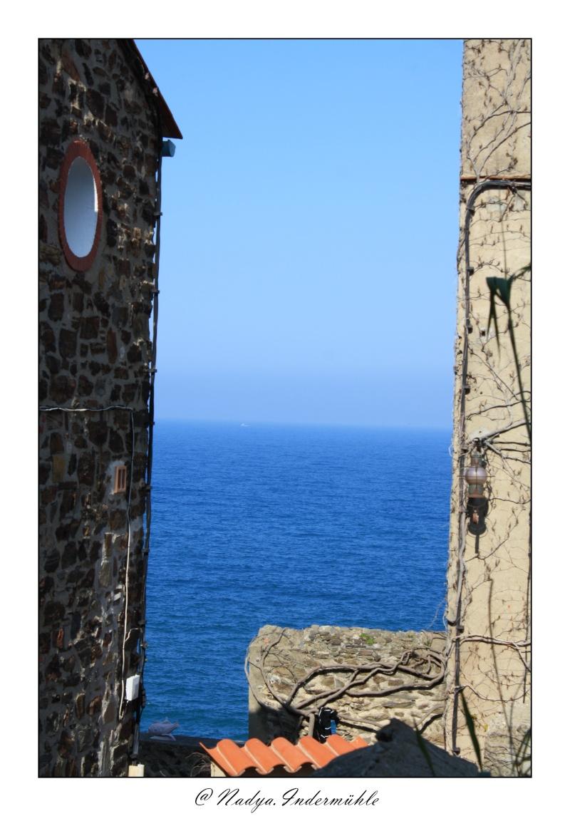Collioure, petit coin de paradis - Page 2 Cadr2053