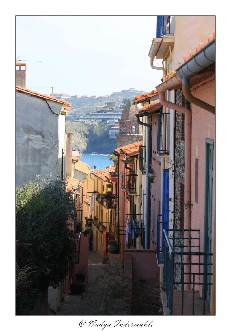 Collioure, petit coin de paradis - Page 2 Cadr2054