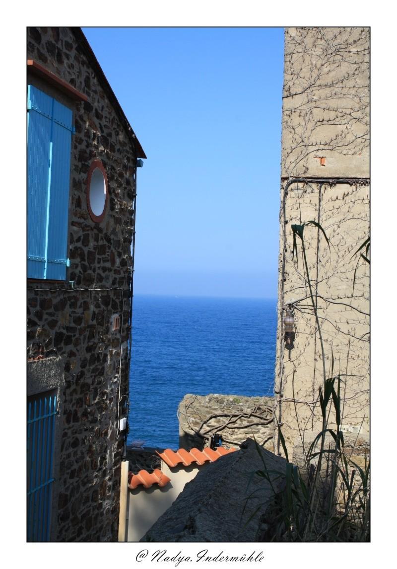 Collioure, petit coin de paradis - Page 2 Cadr2056