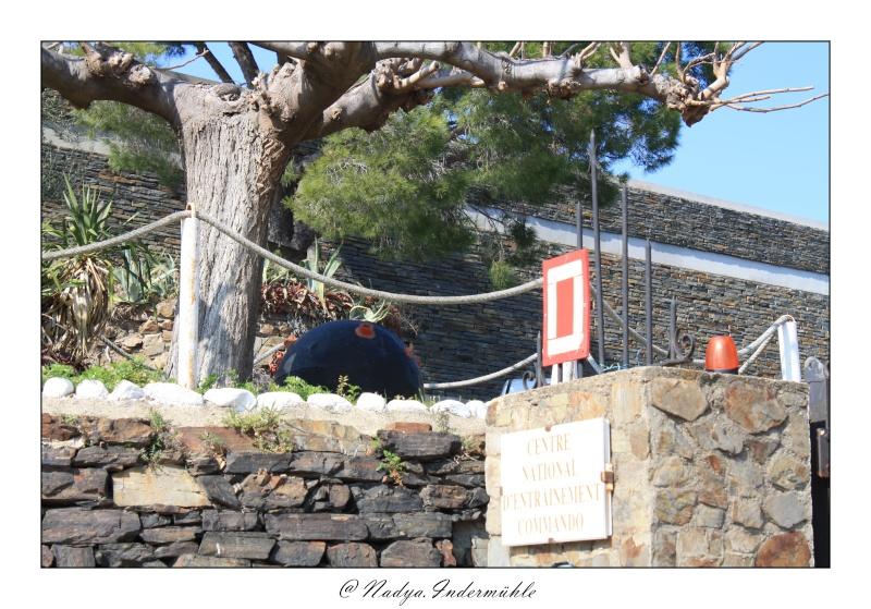 Collioure, petit coin de paradis - Page 2 Cadr2058