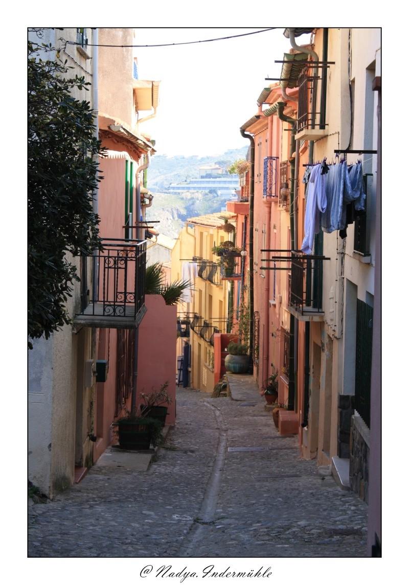 Collioure, petit coin de paradis - Page 2 Cadr2059