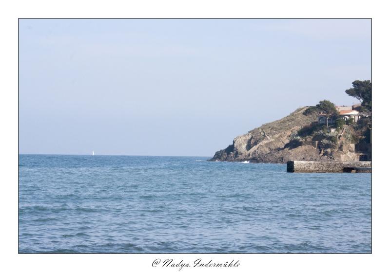 Collioure, petit coin de paradis Cadr2093