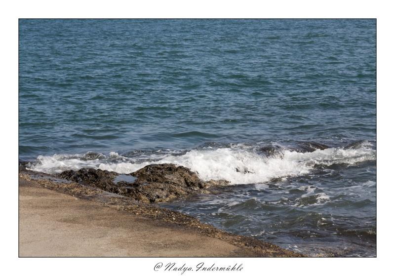 Collioure, petit coin de paradis Cadr2094