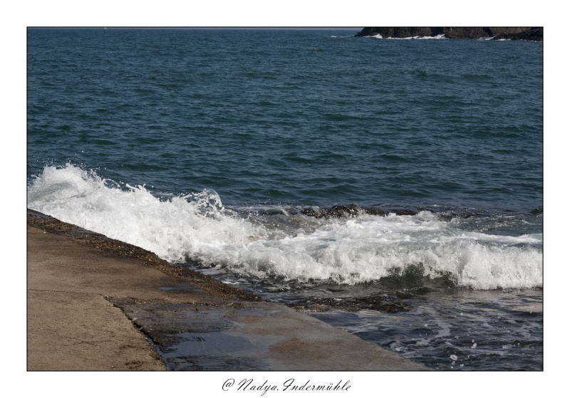 Collioure, petit coin de paradis Cadr2095
