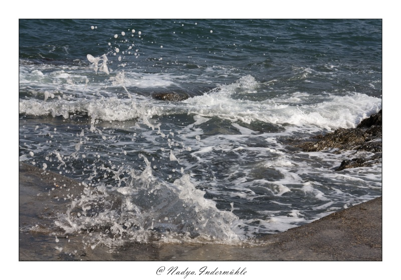 Collioure, petit coin de paradis Cadr2096