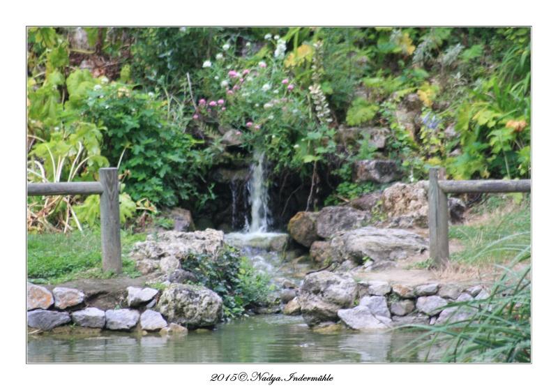 """Jardin des plantes, """"Les Capellans"""" St Cyprien - Page 2 Cadre148"""