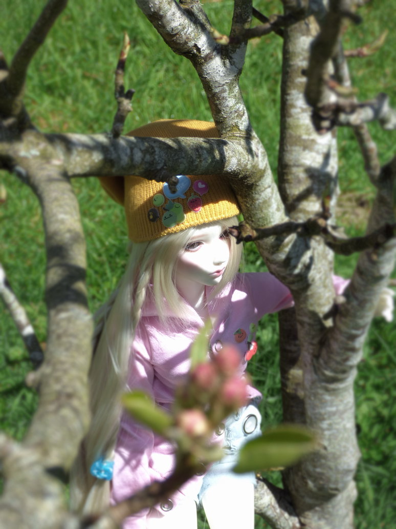 Yoru un nouveau venu dans la familles  - Page 3 Tsukik24