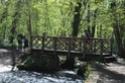 Trail des lavoirs 1er mai 13139310