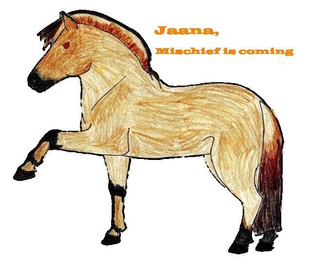 Jaana - Jument - Cavalerie US Jaana10