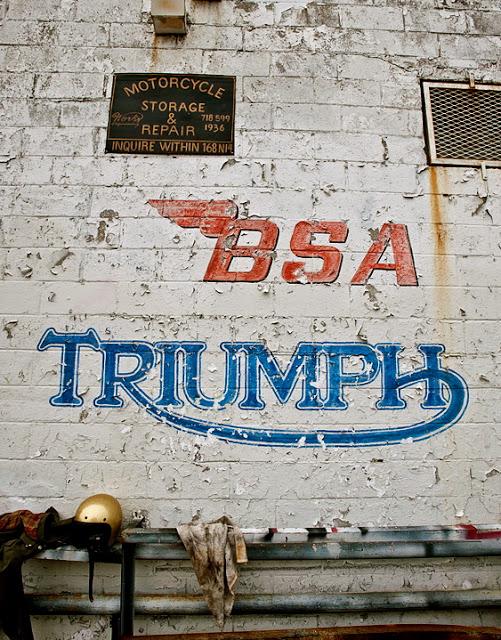 TRIUMPH Triump10