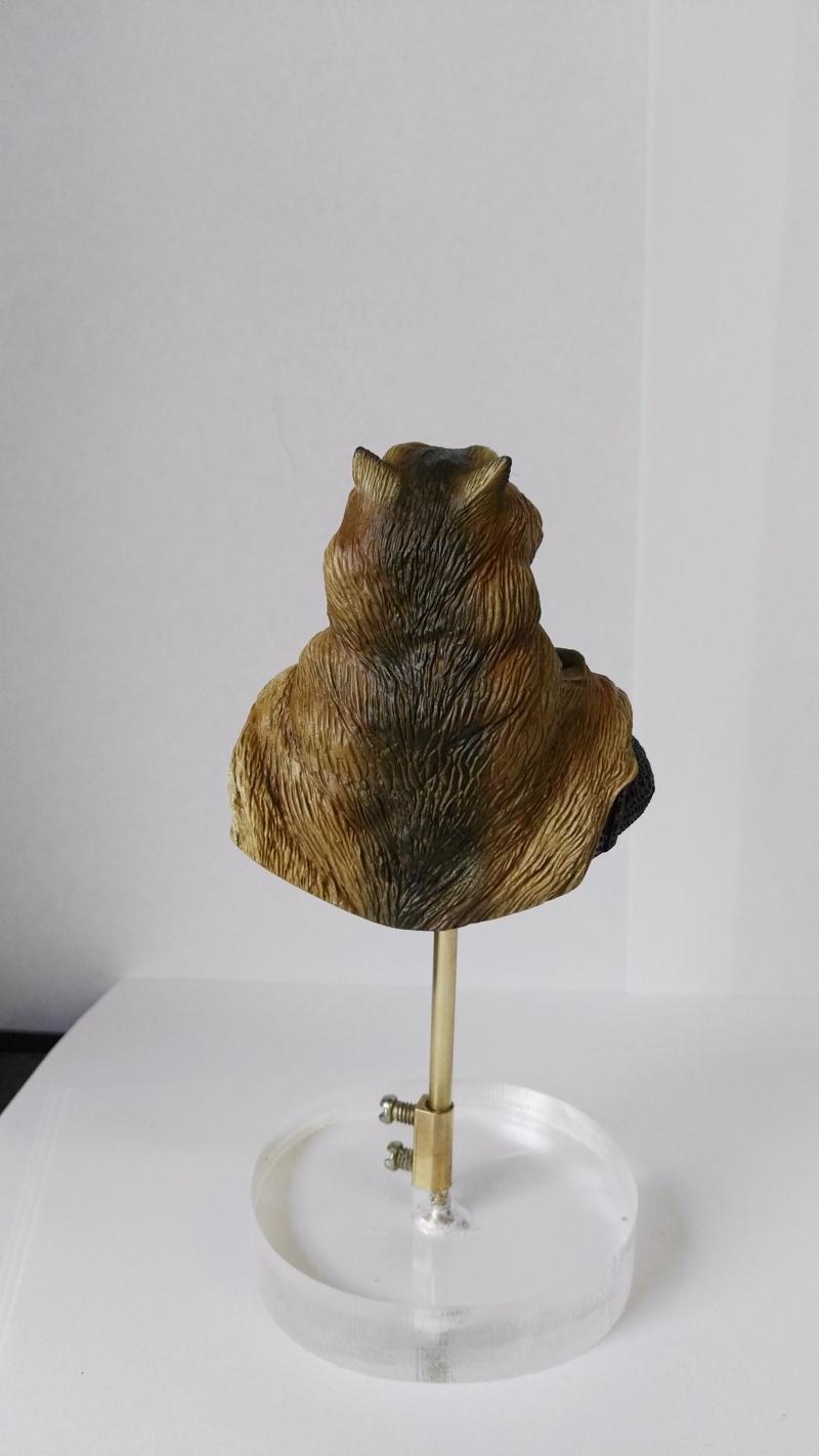 De retour de Mons expo avec une médaille d'or catégorie figurines débutant Img_2024