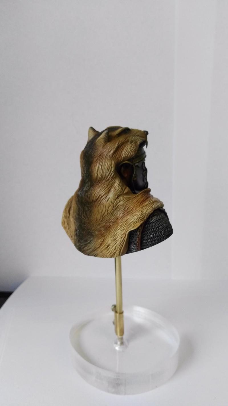 De retour de Mons expo avec une médaille d'or catégorie figurines débutant Img_2029