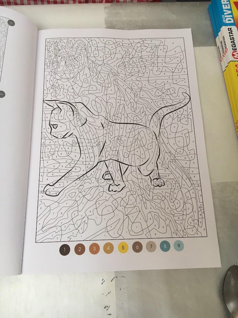 Vice versa : un nouveau magazine de coloriage mystère - Page 2 Img_9324