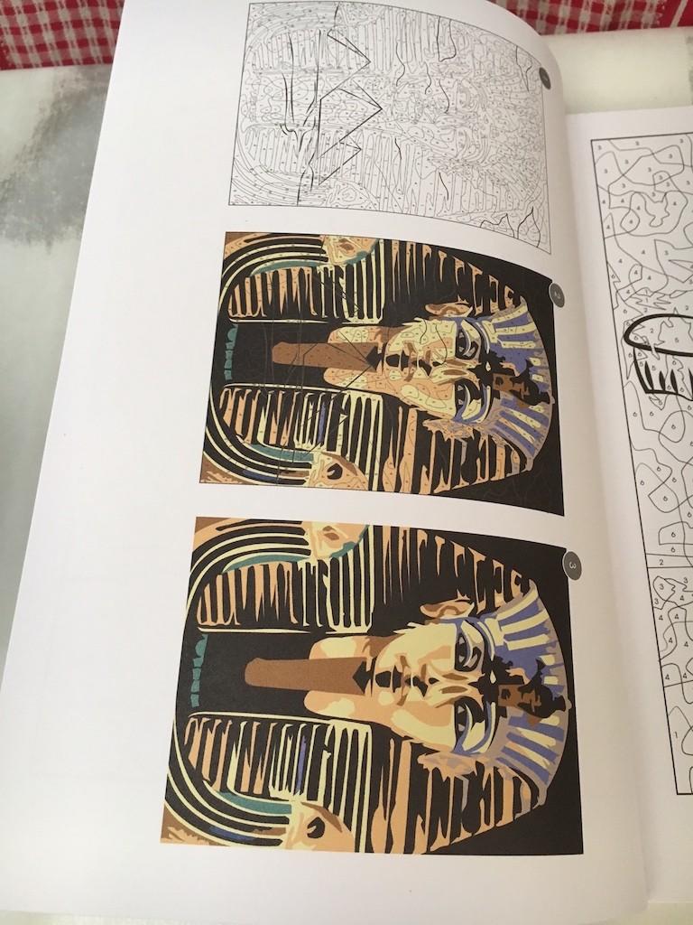 Vice versa : un nouveau magazine de coloriage mystère - Page 2 Img_9325