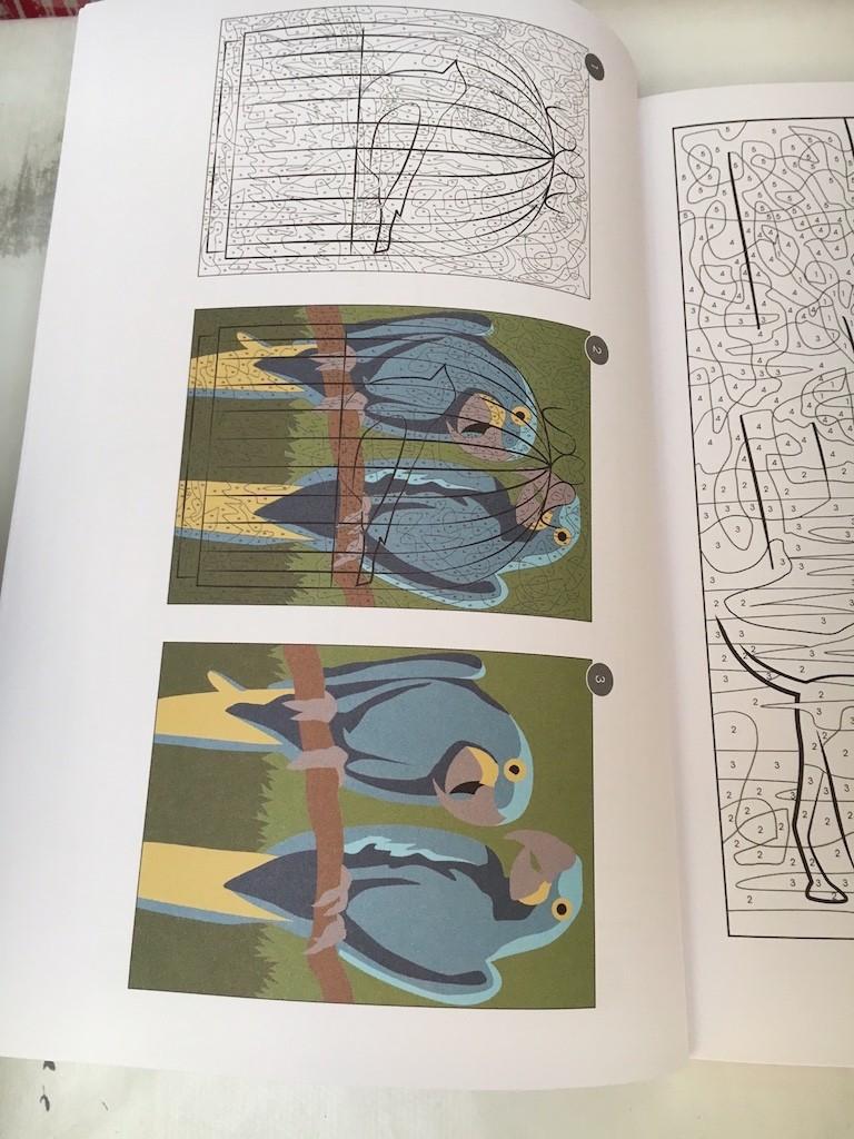 Vice versa : un nouveau magazine de coloriage mystère - Page 2 Img_9326