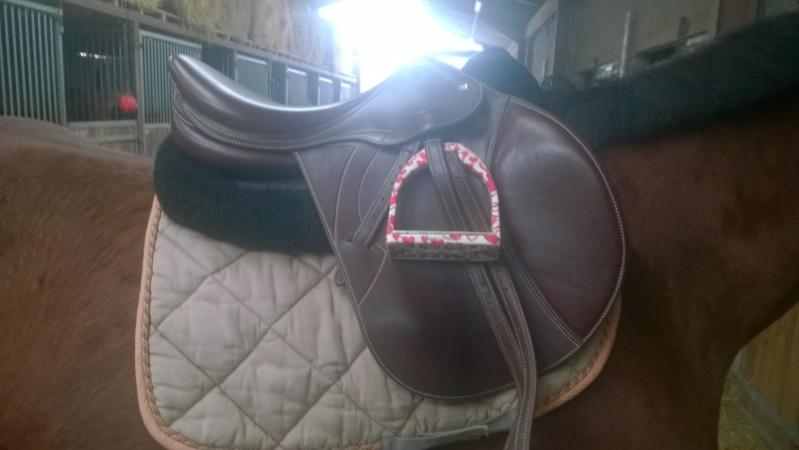 matériel cheval et cavalier Wp_20111