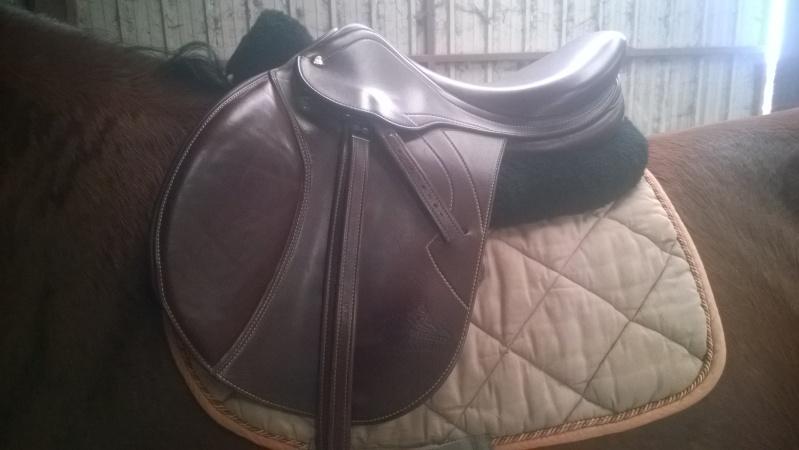 matériel cheval et cavalier Wp_20112