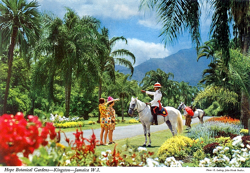 Worth more than gold: Jamaica's Botantical Gardens 26406510
