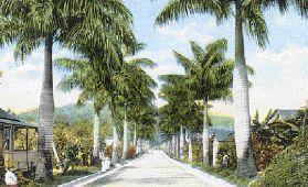 Port Antonio: A HISTORIC PORTRAIT OF THE TOWN WHERE JAMAICA'S TOURISM BEGAN Portan10