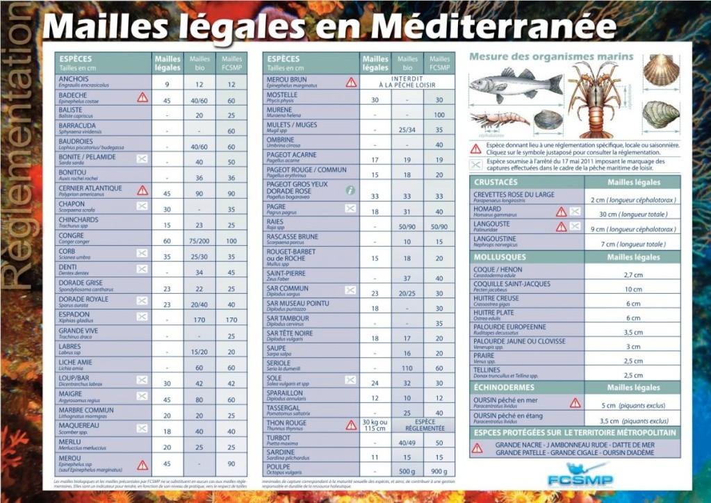 La maille en Méditerrannée Maille11