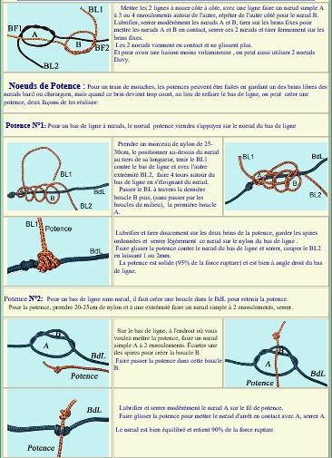 Le noeud de Potence (montage bas de ligne) Noeud_13