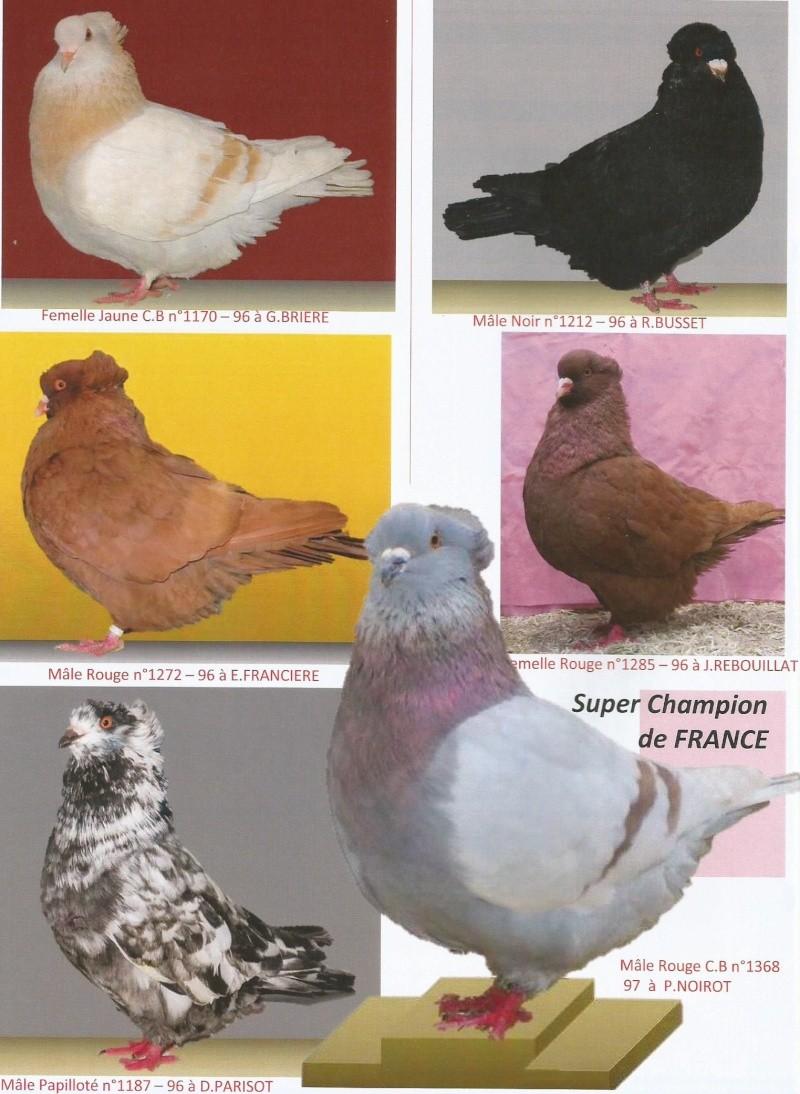 40ième Championnat de france à Niort  en photos  (Source le bulletin N 120) 1210