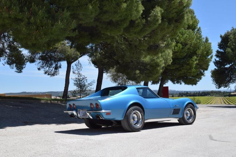 Mon BB Blue de 1971 ! Dsc_0061