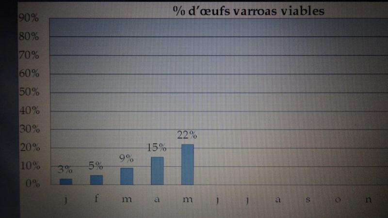 Ruche écologique et barrettes: Lutte VARROAS Dsc00710