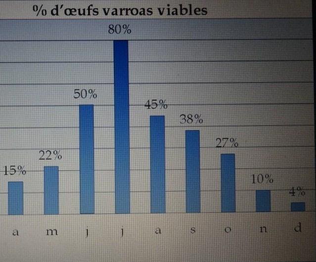 Ruche écologique et barrettes: Lutte VARROAS Dsc00711