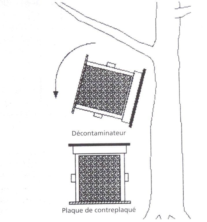 Périodes florales, Observations, Actions Dsc00936