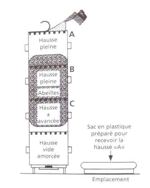 Ruche écologique et barrettes: Lutte VARROAS Dsc01039
