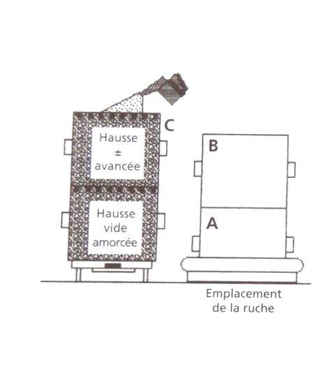 Ruche écologique et barrettes: Lutte VARROAS Dsc01046