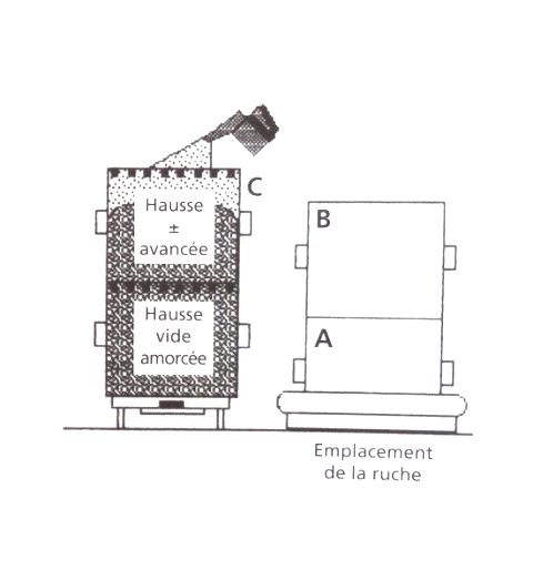 Ruche écologique et barrettes: Lutte VARROAS Dsc01047