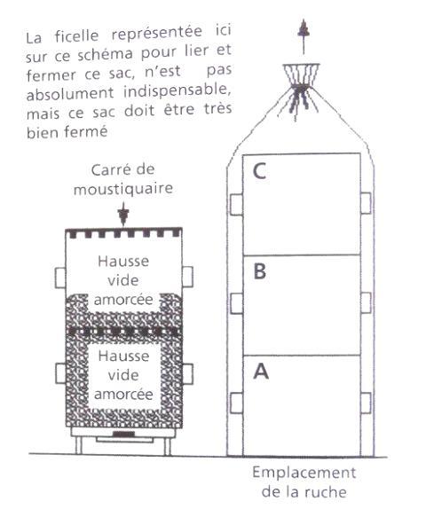 Ruche écologique et barrettes: Lutte VARROAS Dsc01053