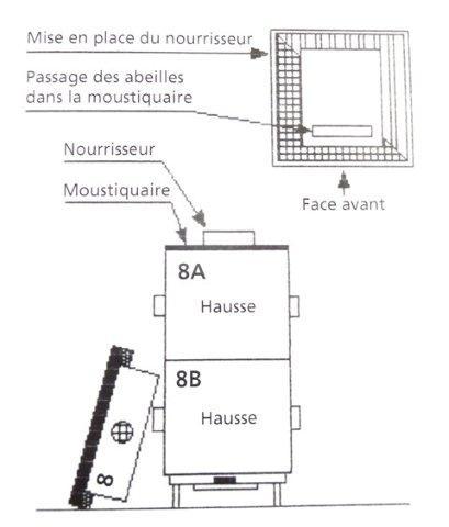 Ruche écologique et barrettes: Lutte VARROAS Dsc01058