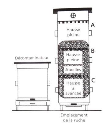 Ruche écologique et barrettes: Lutte VARROAS Dsc01061