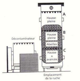 Ruche écologique et barrettes: Lutte VARROAS Dsc01062