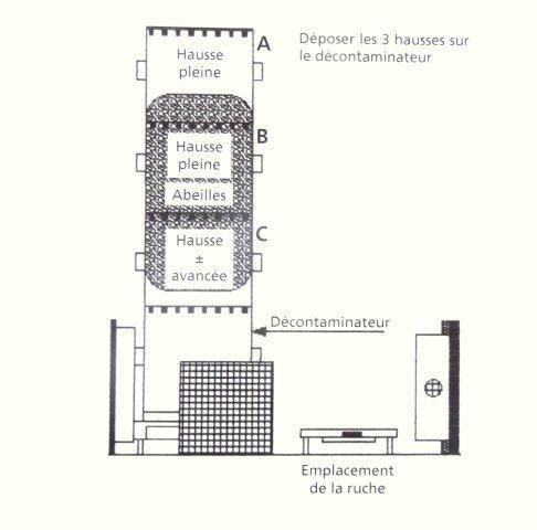 Ruche écologique et barrettes: Lutte VARROAS Dsc01063