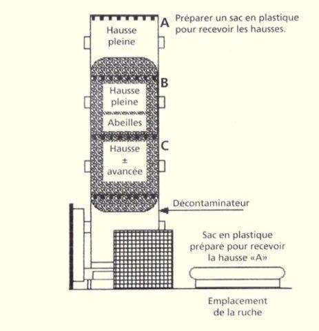 Ruche écologique et barrettes: Lutte VARROAS Dsc01110