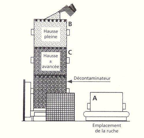 Ruche écologique et barrettes: Lutte VARROAS Dsc01111