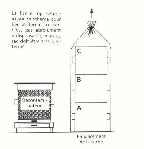 Ruche écologique et barrettes: Lutte VARROAS Dsc01113