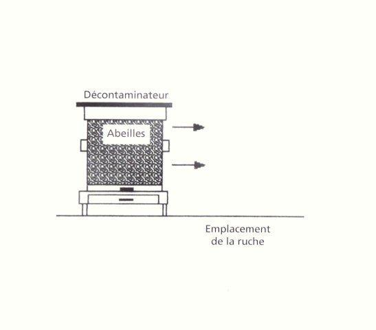 Ruche écologique et barrettes: Lutte VARROAS Dsc01114